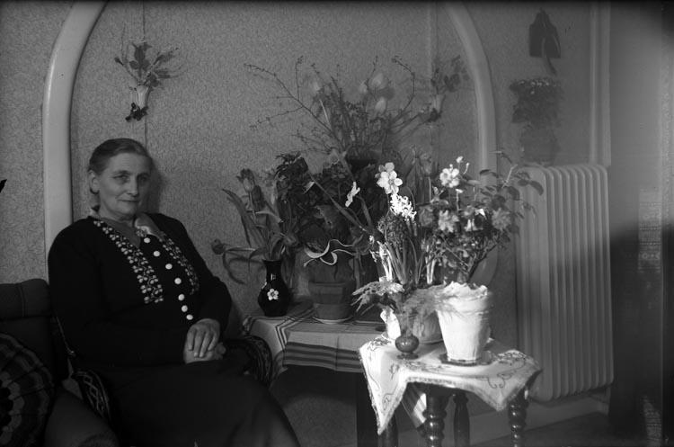 Fru Hanna Christensson på Tegane bland blommor i rumsinteriör