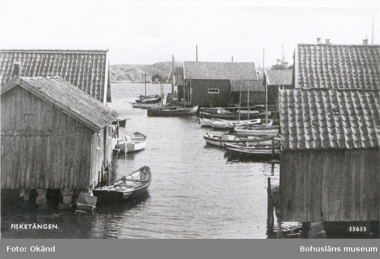 """Tryckt text på kortet: """"FISKETÅNGEN"""". Noterat på kortet: """"FISKETÅNGEN ASKUMS SN. S. SOTENÄS(ET). Kortet köpt 20 juni 1955""""."""