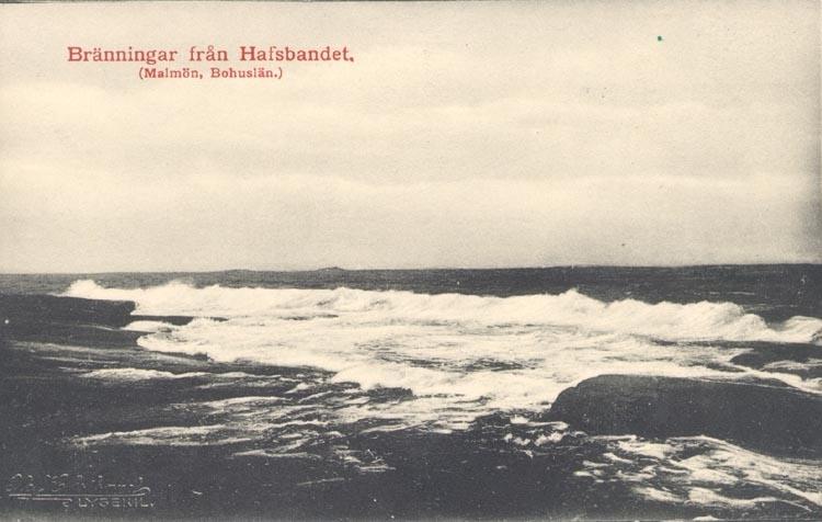 """Tryckt text på kortet: """"Bränningar från Hafsbandet. (Malmön, Bohuslän)"""".  """"FOTO. OLOF EKSTRAND, LYSEKIL 1910""""."""