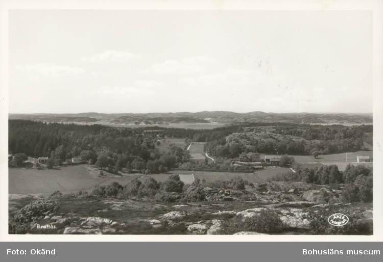 Brattås på Orust 1955