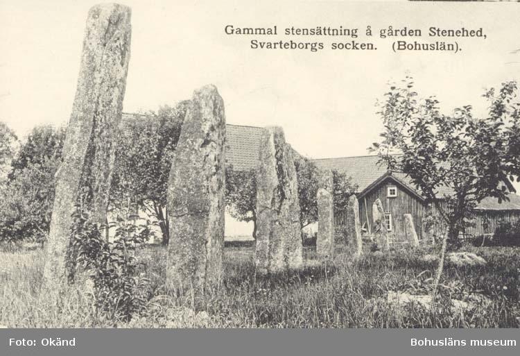 """Tryckt text på kortet: """"Gammal stensättning å gården Stenehed. Svarteborg socken. (Bohuslän)"""" """"Förlag: Axel Arvidsson, Hällevadsholm."""""""