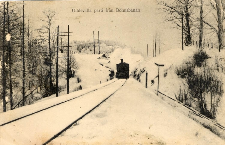 "Tryckt text på vykortets framsida: ""Uddevalla parti från Bohusbanan"" Tryckt text på vykortets baksida: ""Uddevalla pappersh. Hildur Anderson imp. Maria Lundbäck foto."""