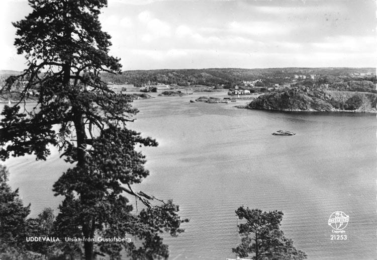 """Tryckt text på vykortets framsida: """"Uddevalla; Utsikt från Gustafsberg."""""""