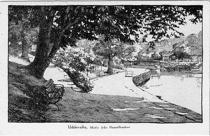 """Tryckt text på vykortets framsida: """"Uddevalla. Motiv från Hasselbacken""""."""