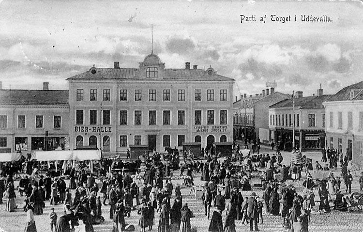 """Vykort. """"Parti af Torget i Uddevalla"""""""