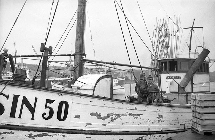 """Enligt fotografens notering: """"Simrishamnsbåtar i Lysekil på väg till Nordkap 21/3 1968""""."""