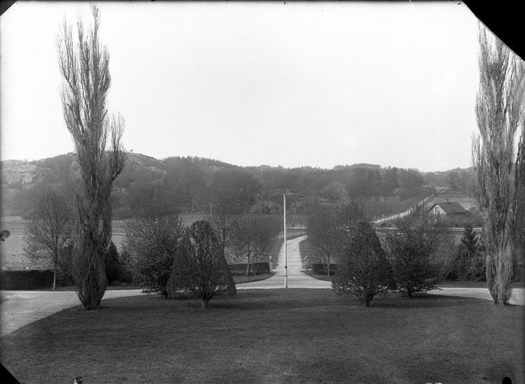 """Enligt fotografens noteringar: """"265 Saltkällan Coll gammal plåt 1912."""""""