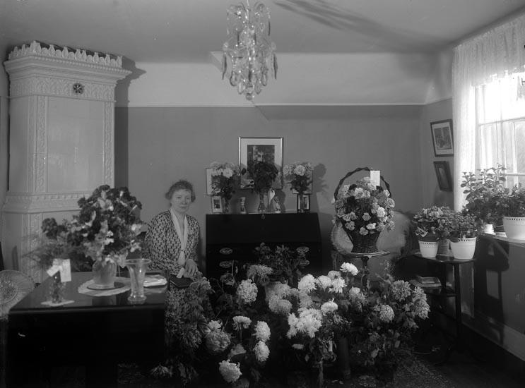 """Enligt fotografens noteringar: """"Fröken Ekstrand tjänstgjort Telegrafen i Munkedal, afgick år 1929."""""""