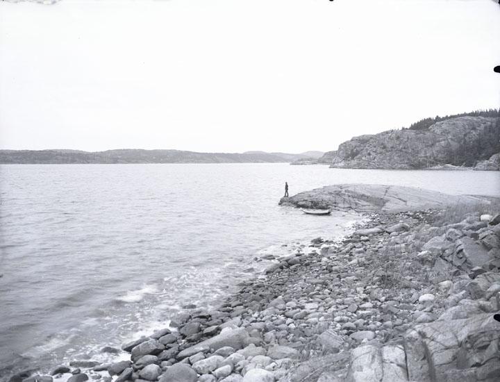 """Omk. år 1930. Gårvik. Andersson stående på klippan. Gullmarsfjorden.""  ""(Andersson, sedemera drunknad.)"""