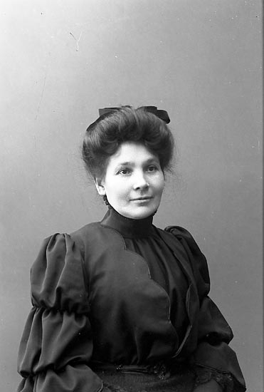 "Enligt fotografens journal nr 1 1904-1908: ""Johansson, Fru Josefine Varekil""."