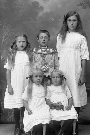 """Enligt fotografens journal Lyckorna 1909-1918: """"Eriksson, Abel Berg Ljungskile""""."""