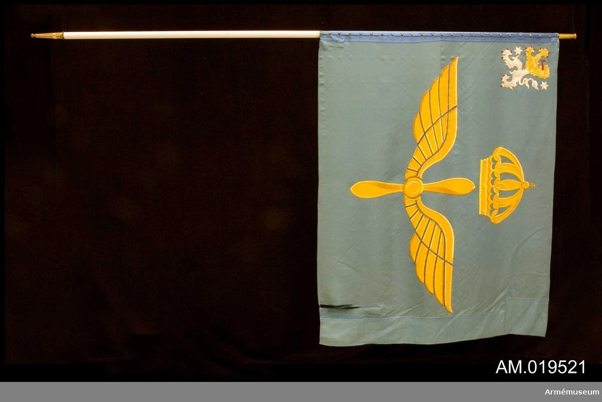 Fanans motiv består av två gula vingar runtomkring en propeller (Flygvapnets vapenbild) som är krönta av en kunglig krona. I övre högra hörnet finns ett västgötalejon i gult och vitt (silver) med röda klor och tunga, och två silverstjärnor. Motiven är utförda i broderi gjort för hand. I fållen i övre vänstra hörnet finns texten: Heraldisk konst Kedja 1939, vilket är  tillverkarens signatur. Fanan är konserverad längs stången och på doppskon märkt: Kungliga Västgöta flygflottilj. Fanans stång är inte delbar.