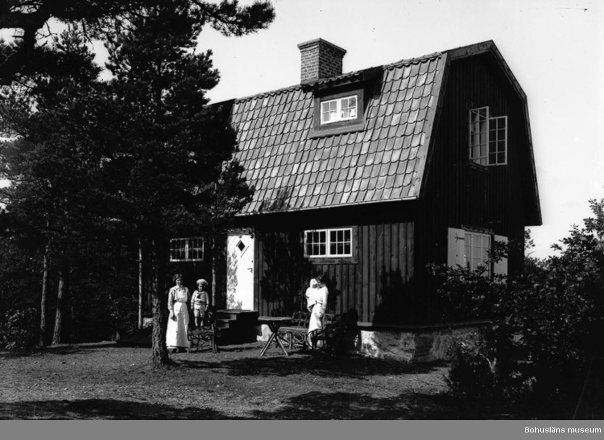 """Enligt fotografens journal nr 2 1909-1915: """"Ljungberg, Fru (Kapten L. villan Ön).""""."""
