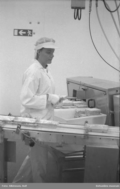 """Enligt fotografens noteringar: """"Ingrid Lindström."""" Fototid: 1996-01-19."""