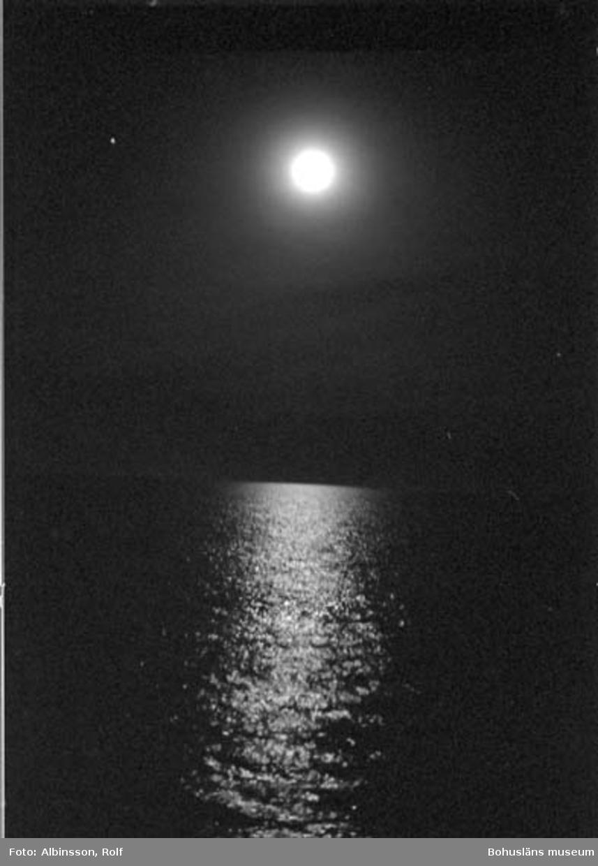 """Enligt fotografens noteringar: """"Månen och silversken."""" Fototid: 1996-03-06."""