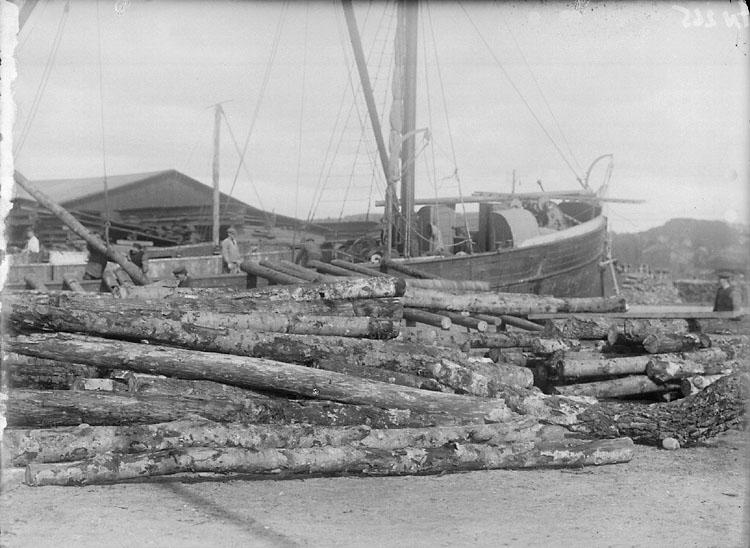 """Enligt senare noteringar: """"Aspstockar avsedda för Tändsticksfabriken, i hamnen Uddevalla. I bakgrunden mindre lastångare."""""""