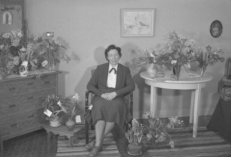 """Text till bilden: """"Fru Signe Persson, Slätten B9. 50 år. 1950.01.19""""             i"""