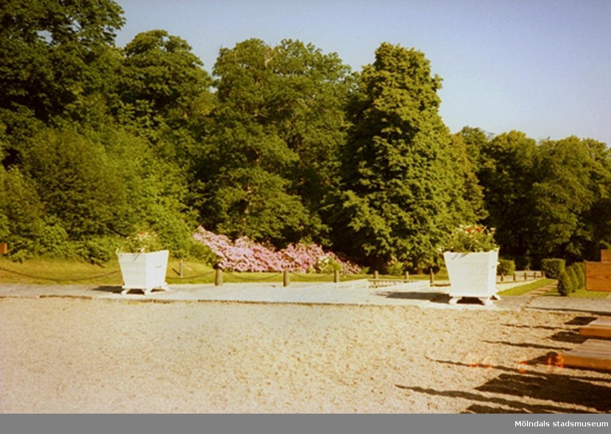 Två stora vita blomsterurnor står placerade på norra sidan av parken.