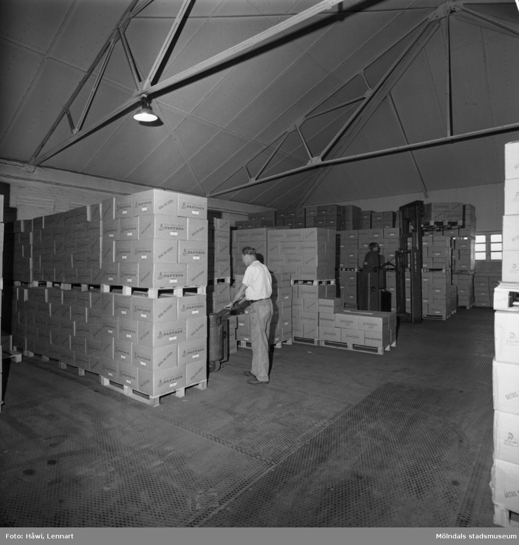 Män i arbete i lagerbyggnad nr 102 på Papyrus i Mölndal, 5/9 1968.