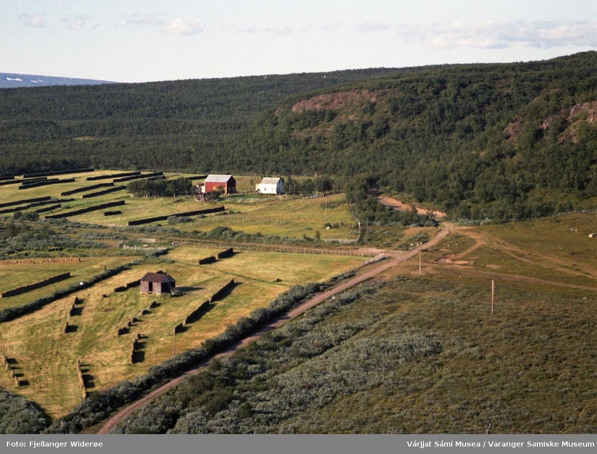Flyfoto av Suovvejohka / Bergeby i Unjárgga gielda / Nesseby kommune, 1963.
