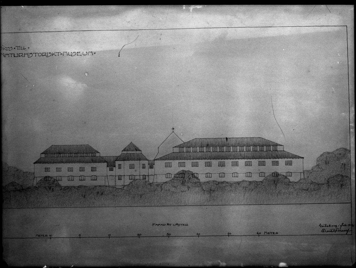 'Ritningar till nytt Naturhistoriskt Museum. Ritningarna avfotograferade mot vägg. (Signerade Ernst Torulf 1914). ::  :: ''Skiss till Naturhistoriskt museum, fasad åt väster''. ::  :: Ingår i serie med fotonr. 4271:1-24.'
