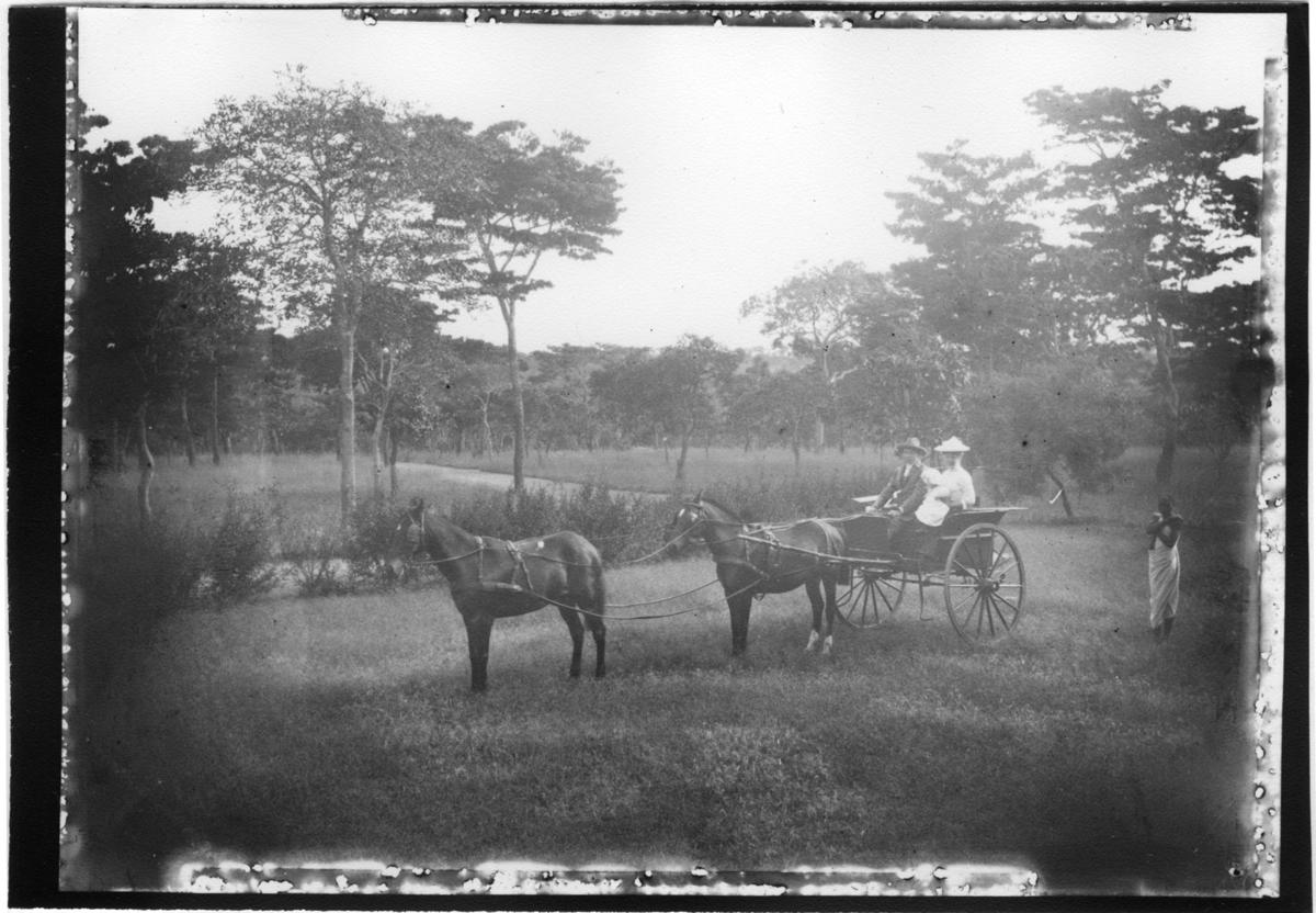 'Diverse fotografier från bl.a. dåvarande Nordrhodesia, nu Zambia, tagna av Konsul Magnus Leijer. ::  :: 1 st kvinna med bebis i famnen, 1 st man sittades i vagn dragen av 2 hästar. Bakom står 1 st man. Samtliga på gräsfält, grusväg och träd i bakgrunden.'