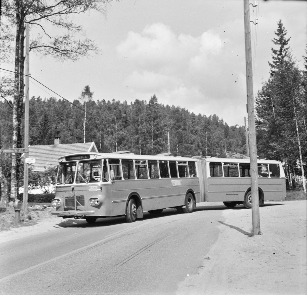 En av Norges første leddbusser, levert til Torridalens Bilruter i Kristiansand, fotografert ved Samkom. Den avbildede bussen har kjennemerke K 2291.