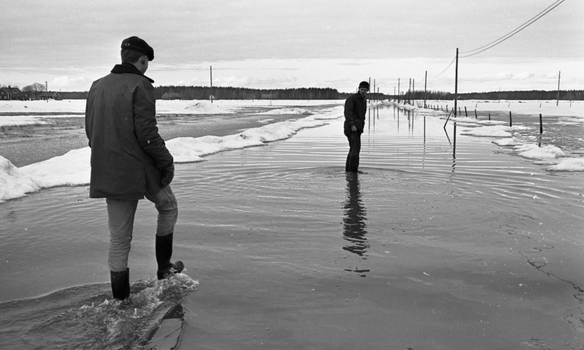 Översvämningen 10 mars 1966Översvämning bland brevlådor och vägar