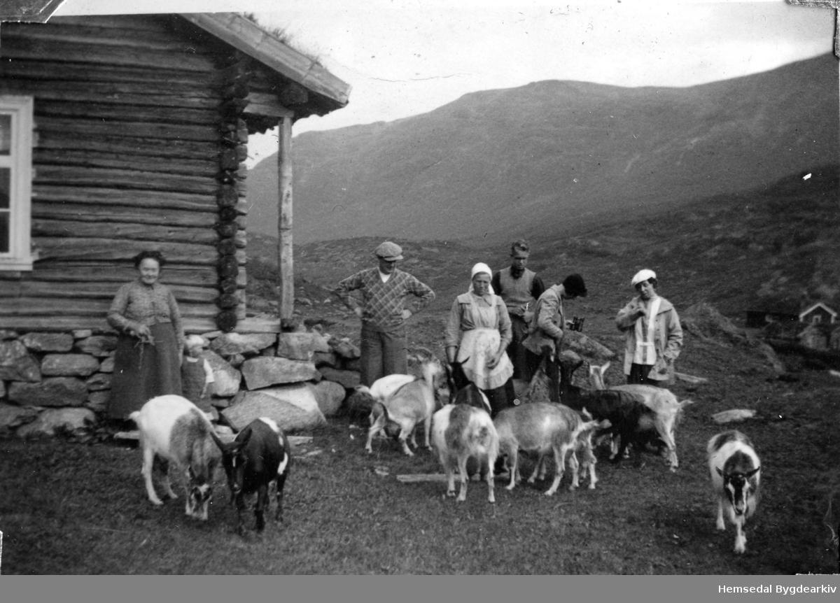 Nr.1 frå venstre: Gunhild Hulbak(1863-1948) , fødd Bakke. Nr.3 frå venstre: Sigrid Haugen (1891-1958) Dei andre er byfolk Biletet er teke på Heggeslettene (Heggjislettat'n) i Hemsedal ca. 1940