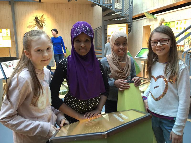 Lill Agnethe Beck (fra venstre), Amal Jamal, Huda Sharif og Kristine Sokac fra 6. trinn på Frydenlund skole forteller at de lærte mye om fotosyntesen, til tross for at de bare var på et relativt kort besøk i Det fantastiske treet. Foto: Stine S. Skjæret, Anno museum