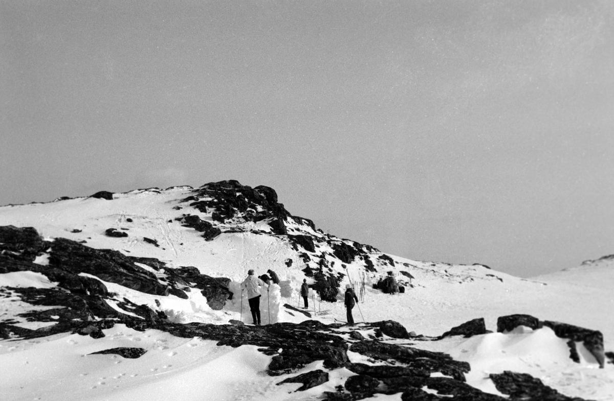 Skiløpere ved fjellknaus på Aunfjellet.