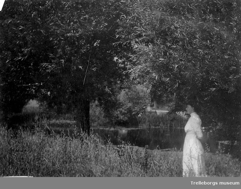 Olof Christofferssons foto, landskap negativ 70:2310.