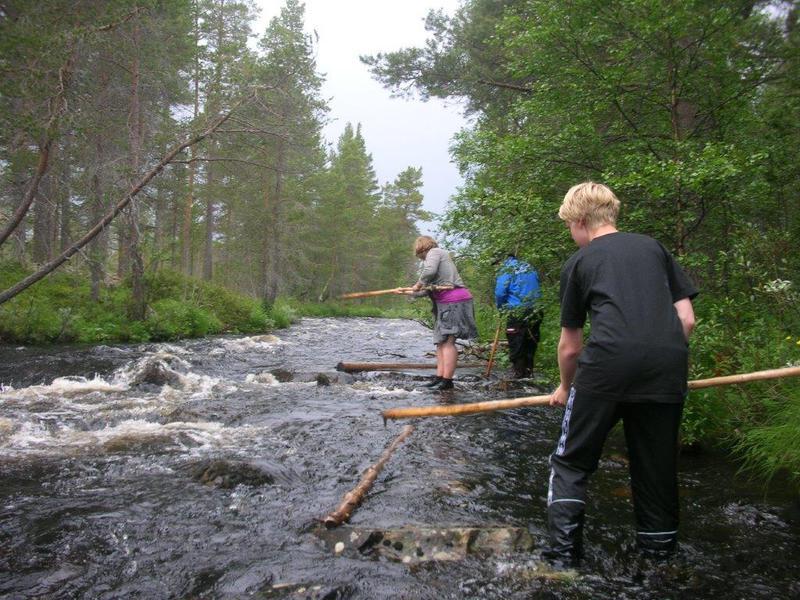 Skog og fløterdag (Foto/Photo)