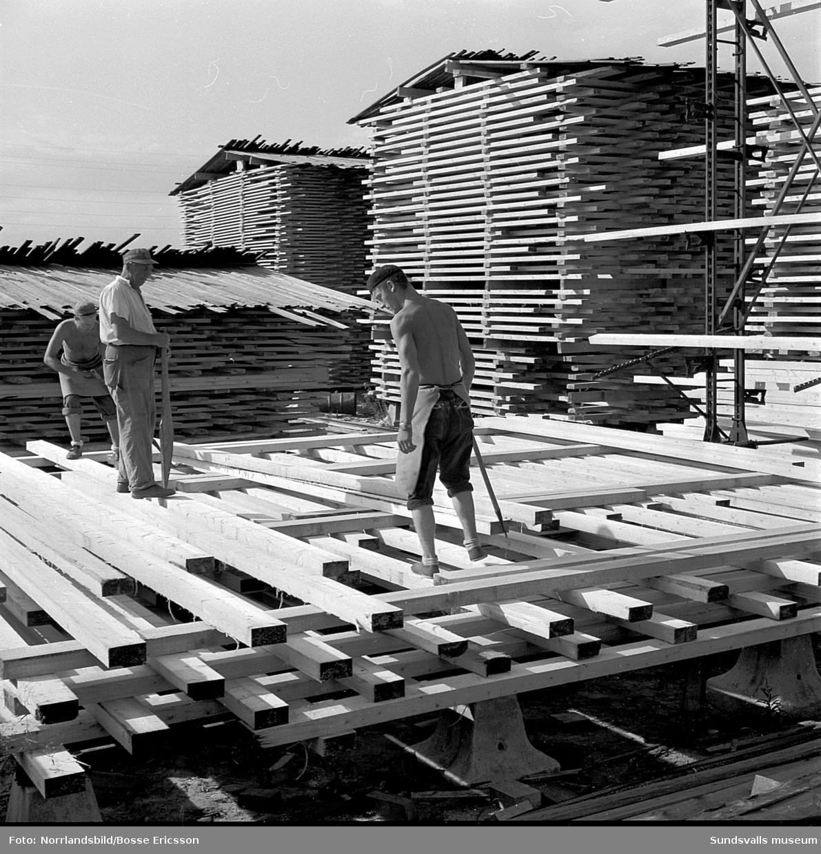 Sista stockarna sågas vid Karlsviks sågverk som var det sista sågverket som lades ner på Alnö.