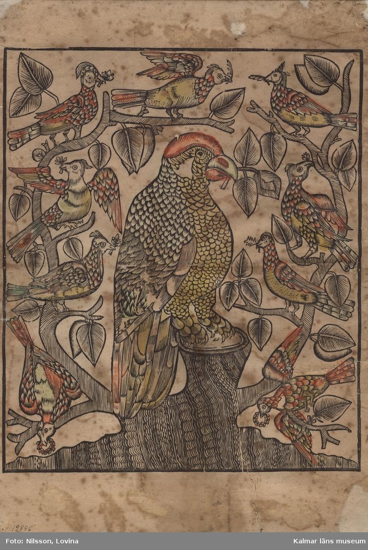 I mitten en papegoja med blad i näbben, sittande på en trästubbe (lind?), från vilken grenar går ut på sidorna, på dessa grenar sitter nio andra fåglar alla med en kvist eller krans i näbben.