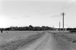 Vy över Järsta 14:1, Tensta socken, Uppland 1978