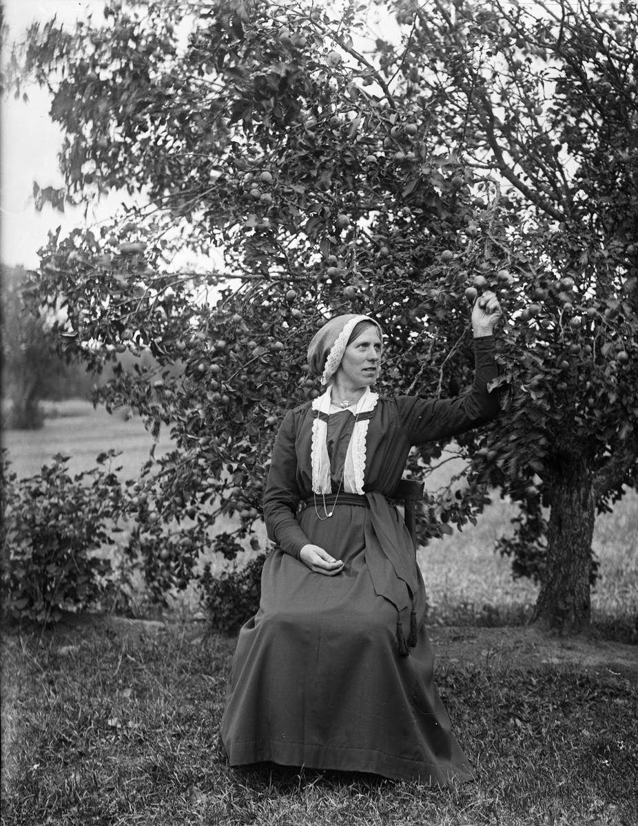 """Fröken Hilda Erikson Tängbo Altuna"", Uppland 1918"