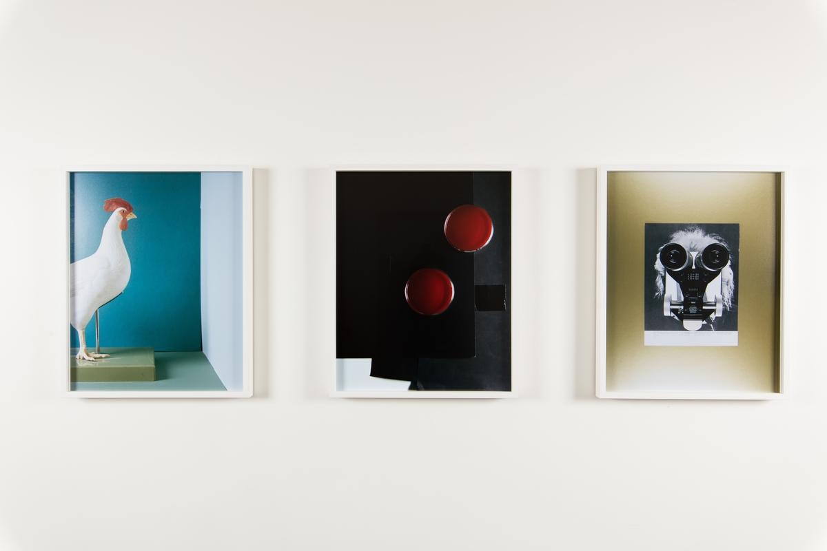 """Hennes prosjekt for Urbygningen """"Still Life #1- 9"""" er serie fargefotografier som viser ulike objekter fra virksomheten ved NMBU. Objektene er iscenesatte og bildene fremstår som fargerike, dekorative stilleben der gjenstandene inngår i et nærmest surrealistisk univers. Fotografi oppfattes av mange som å være et objektivt sannhetsvitne, men hva slags sannhet som dokumenteres her er høyst uklar. Marte Aas framhever at all forskning er en del av ulike sannhetsregimer som både kan utfordre og utslette hverandre over tid. En forskningsprosess vil alltid bære med seg subjektiv omgang med en objektiv virkelighet. Betrakteren er alltid en del av det hun betrakter. De objektene vi omgir oss med er ikke nøytrale og de forteller ofte potente historier om samtid, ideologi og politikk. Ved å isolere og tydeliggjøre noen av tingene fra NMBU i fotografier vil kanskje en ny historie om universitetet kunne leses. Hennes arbeider baserer seg snarere på et poetisk enn et positivistisk, forhold til tingene. De ni fotografiene er montert som to serier og plassert i sosiale soner foran to av byggets foredragssaler."""
