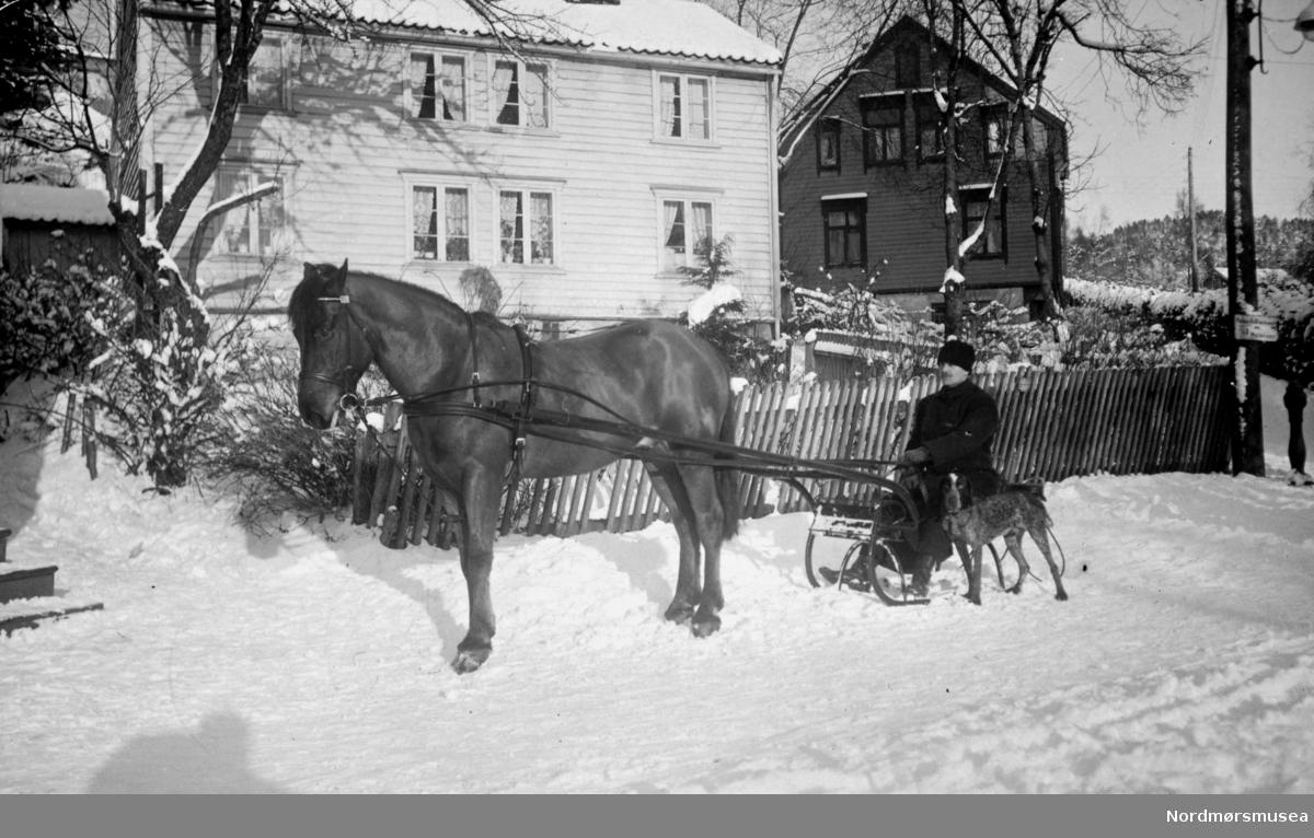 Et vinterbilde av en ukjent mann med hest og slede. Kan være fra Molde (Moldefotograf). Se også reg. nr. KMb-1978-003.0021 for et annet bilde med samme scenario. Ukjent datering, men muligens fra perioden 1910 til 1930. Fra Nordmøre Museums fotosamlinger.