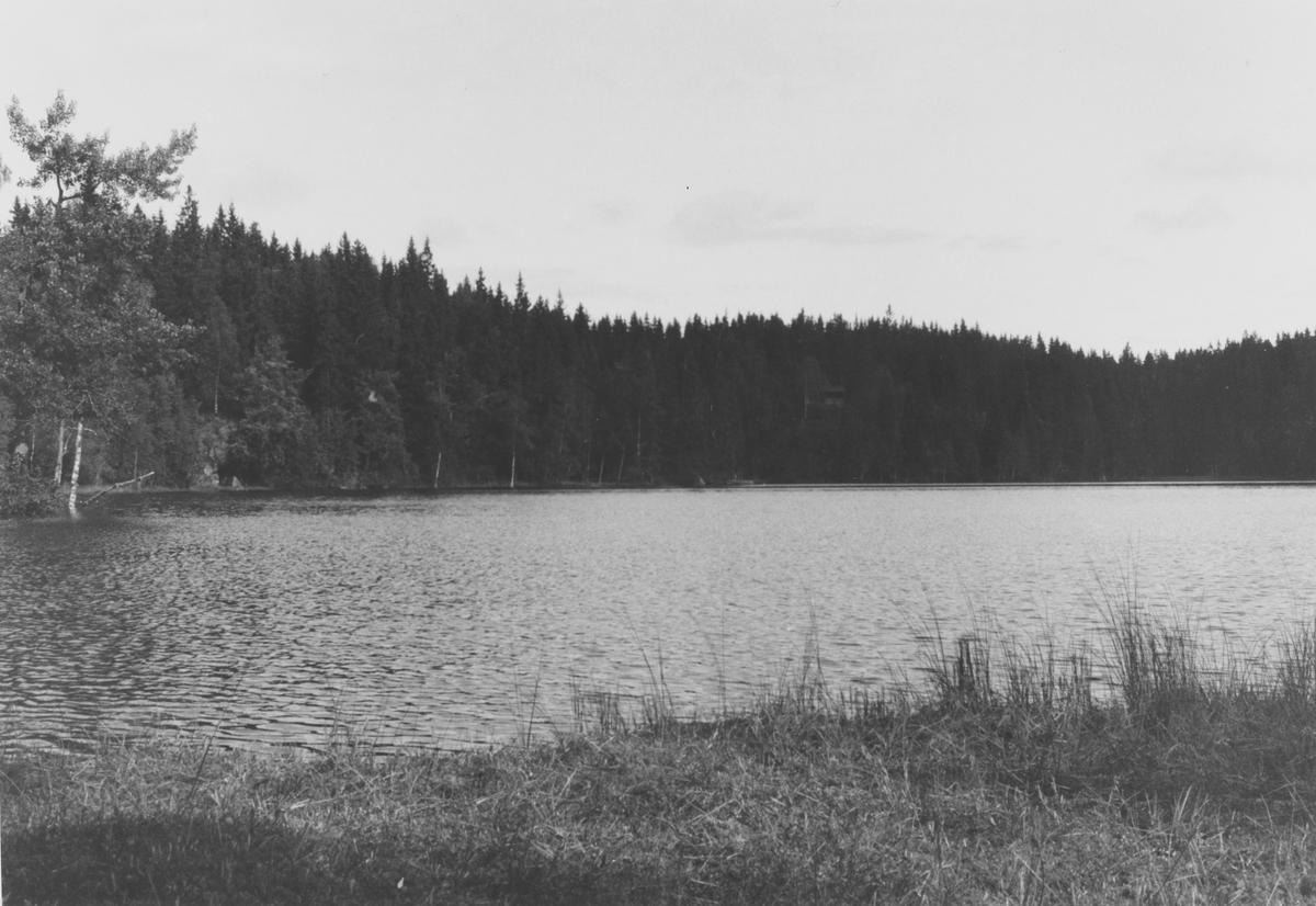 Flabben (Flabbtjern)  på Romeriksåsen, i gangavstand fra Askveien.