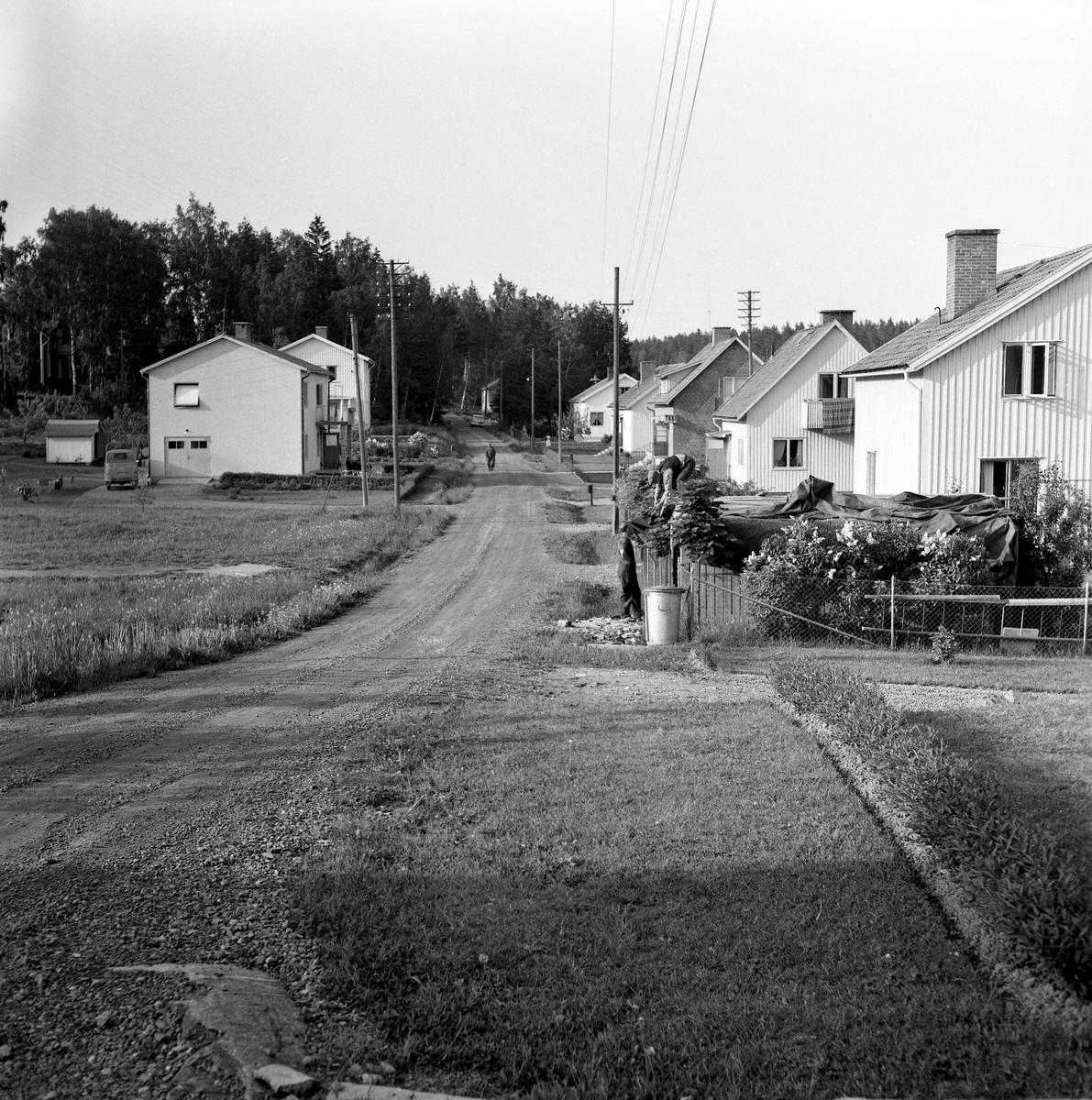 Någonstans i Värmland - från slutet av 1950-talet. Kommentar från en användare: Älvenäs, gatan rakt fram är Spinnaregatan, och längst ner ligger ungkarlshotellet. Alla husen är rivna men gatan finns kvar! Jag bodde i det vänstra huset 1966. Bakom granskogen går i dag E18 fram.