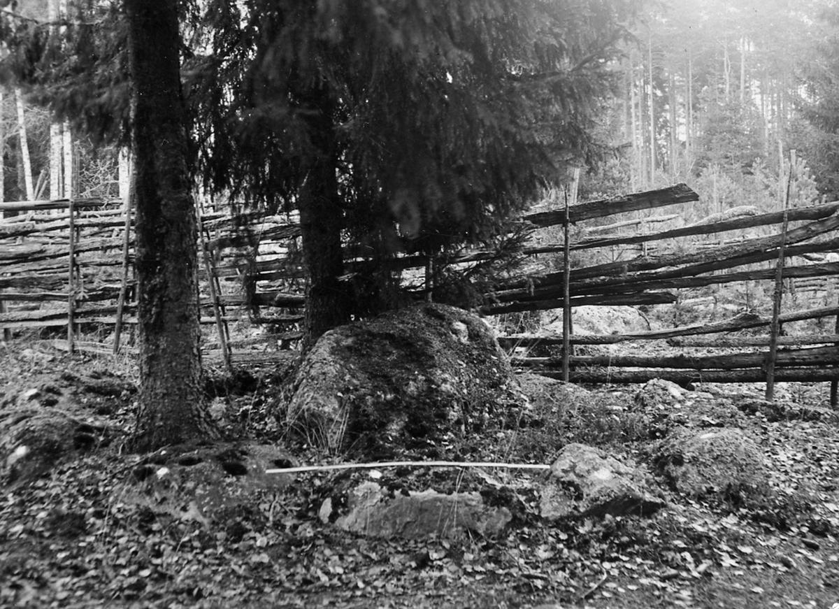 Stensättning vid Frosta