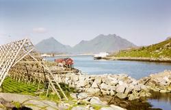 Landskap i Lofoten, med fiskehjell i forgrunnen og fjell i b