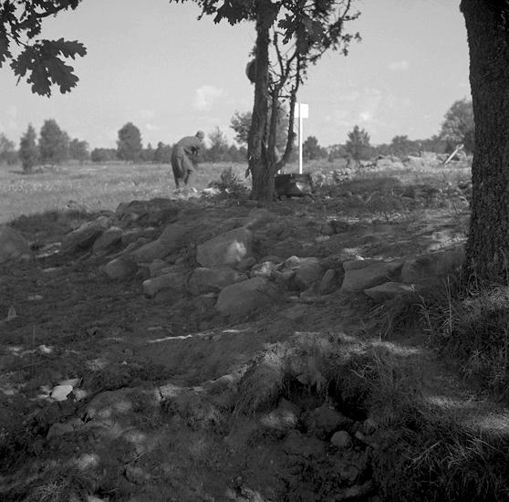 Foto av möjligen gravfält (?) I bakgrunden skymtar en man som kikar efter något.