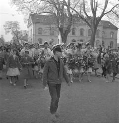 Studenterna fjärde dagen, 1959. Studenterna m.fl. tågar utm