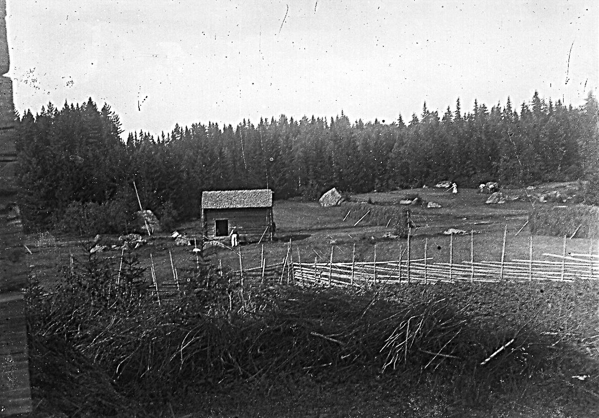 Östlinstäkten i Östansjö. Foto från ladugården.