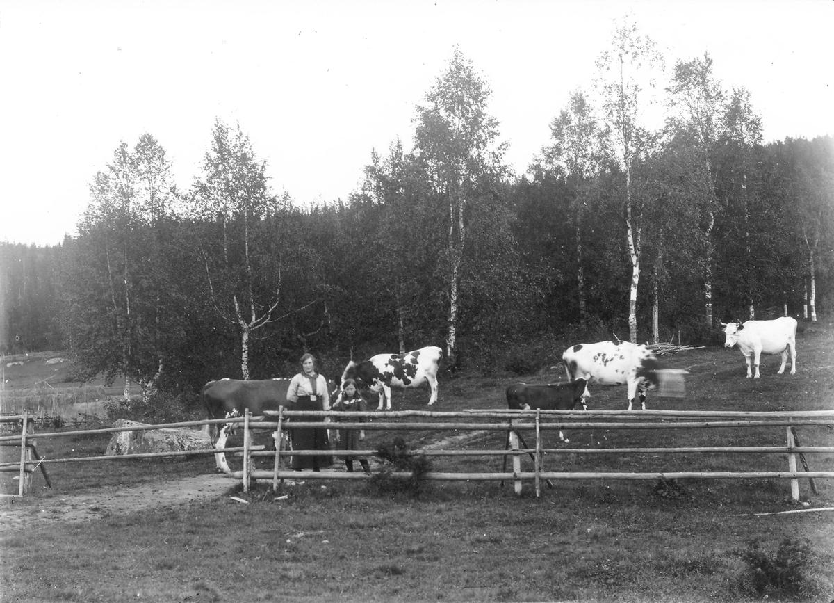 """Bergsänge i Herte. Personerna är från vänster Marta Hansson från """"Per-Ers"""" i Herte och Stina Frisk (Eriksson), kusin till Marta."""