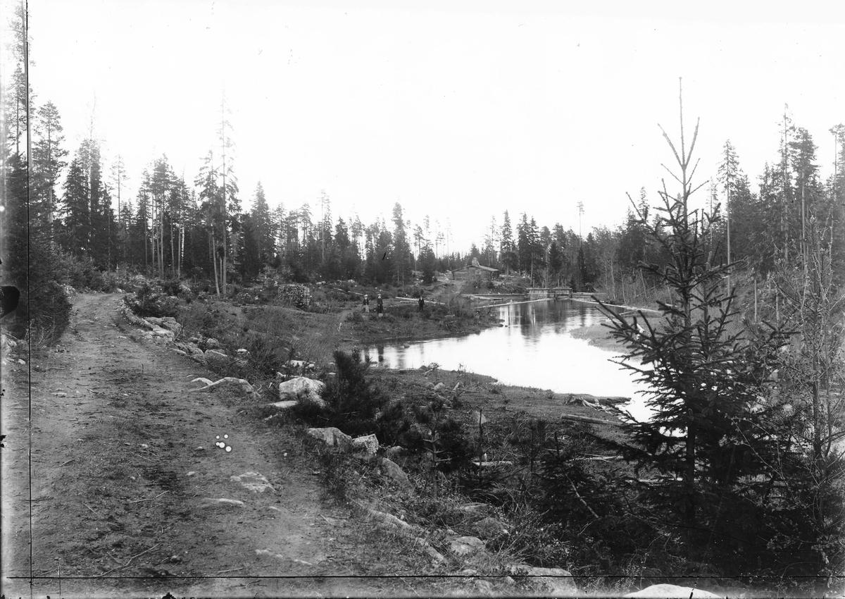 Lövdammen, låg ovanför Fångsmyra efter vägen till Rickebo. Gällsån rinner genom dammen. Foto den 26 maj 1907.