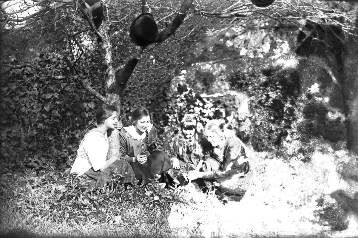 Fyra flickor under ett träd.