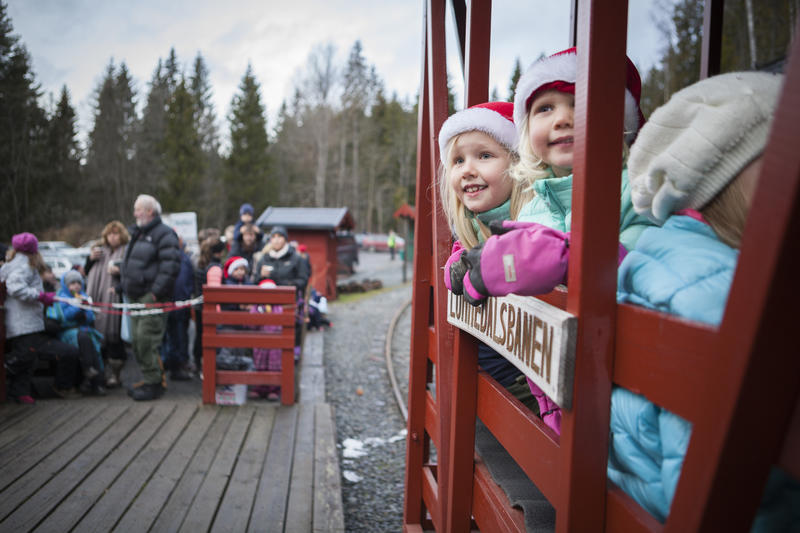 RS3333_Lommedalsbanen_jul2015-68.jpg